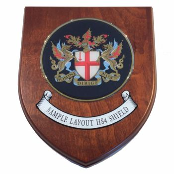 Presentation shield with medium round shaped centrepiece and scroll.
